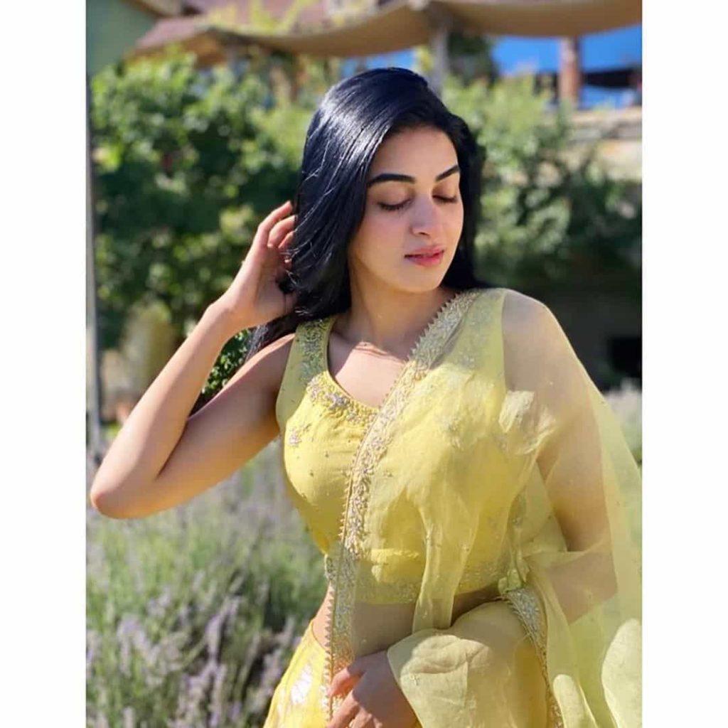 Anmol Baloch Dresses
