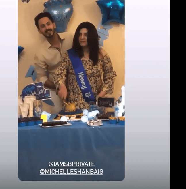 Beautiful Pictures of Shan Baig Wife Michelle Expecting Their First Baby