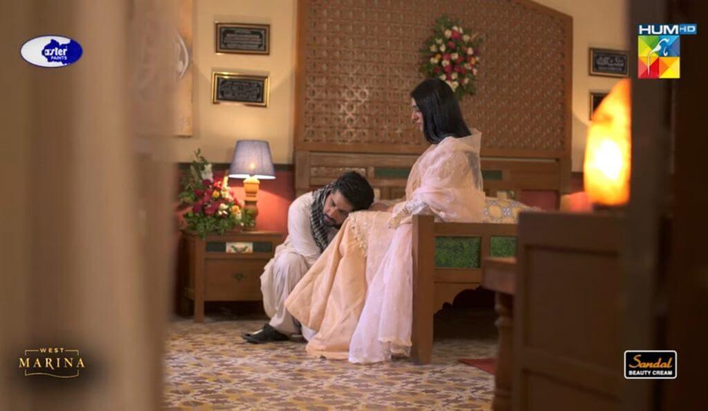 Raqs-e-Bismil Last Episode – Ending Leaves Everyone happy