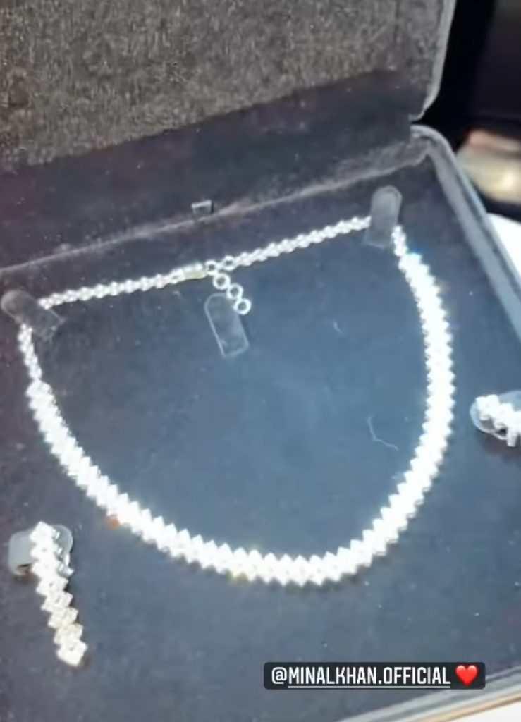 Ahsan Mohsin Ikram's gift to Minal Khan might make you say eeww!